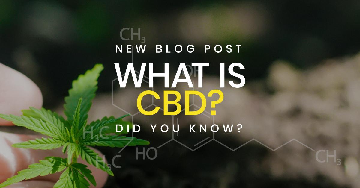What-is-CBD