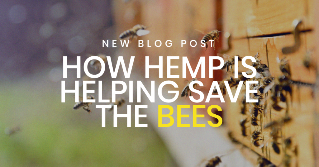 hemp saving the bees